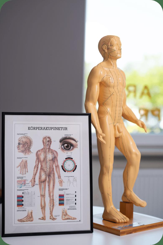 Akupunktur Poster